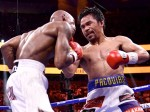 Pacman fights in parliament now