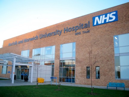 UK goes to the polls with NHS top priority