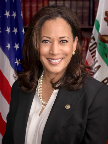VICE-PRESIDENTIAL CANDIDATE KAMALA SPICES UP THE US ELECTIONS